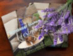 final Modern Day Shaman book (3).jpg