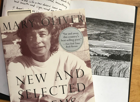 The Mary Oliver Series
