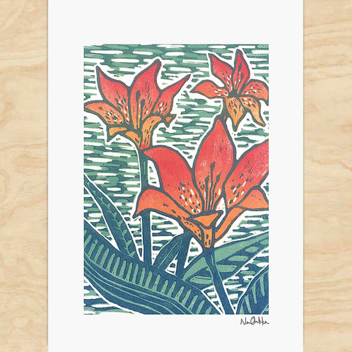 Wood Lily Cards (6)