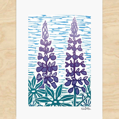 Lupines Cards (6)