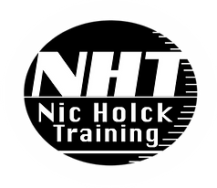 NHT_logo_outlines_glow.png