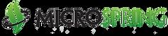 Microspring_Logo_wout_trademark_No_Backg