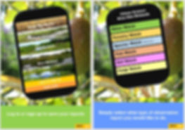 Wetland_App.JPG
