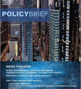 Policy_Brief.JPG
