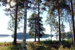 lac runn Liv Suède