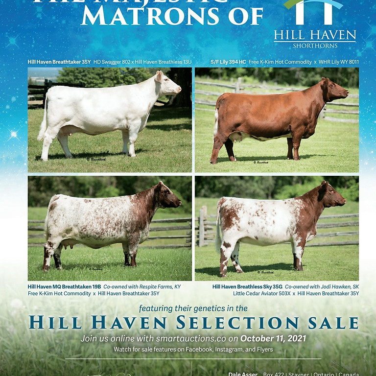 Hill Haven Selection Sale