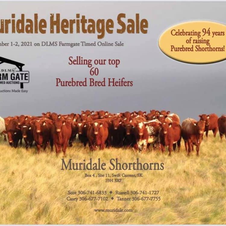 Muridale Heritage Sale