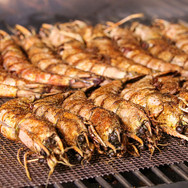 Grilled African Tiger Shrimp