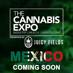 TCE MEXICO JF COMING SOON 5.jpg