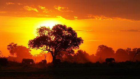 African sunset.jpeg