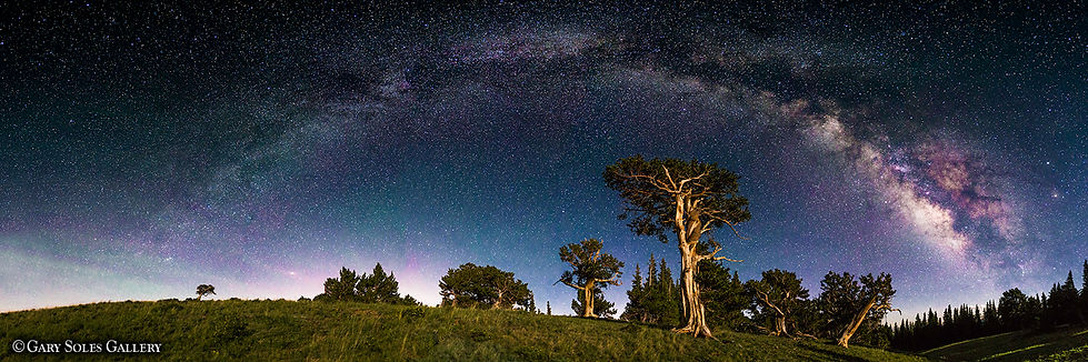 Milkyway Moonshadows web.jpg