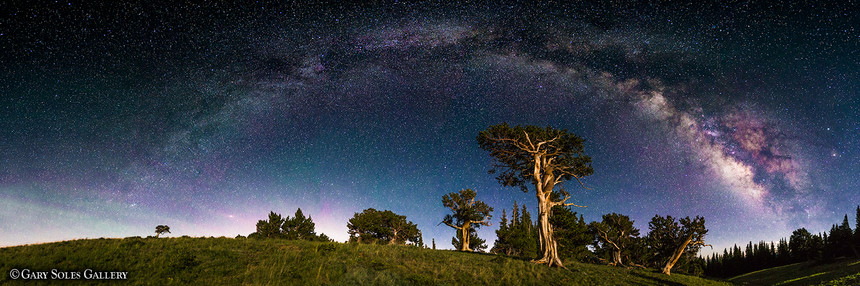 Milkyway Moonshadows web.jpg