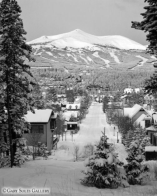 Breck Winter Morn 4_5 BW web.jpg
