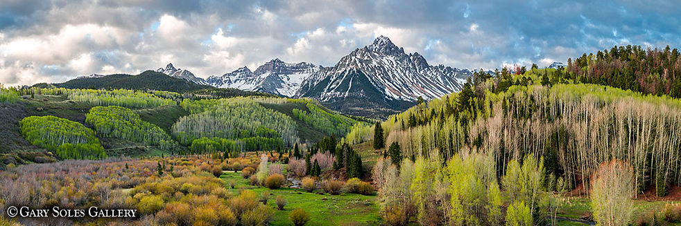 Sneffels Spring Pano, mount sneffels, 14er, spring aspen, green, wetlands, sneffels range, colorado spring