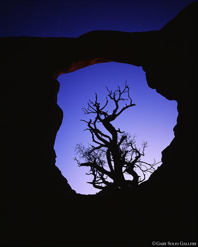 Cresent Arch