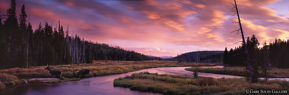 Lewis River Sunset