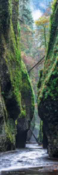 columbia river gorge,  oneonta gorge, oregon, gary soles, gary soles gallery, vertical pano