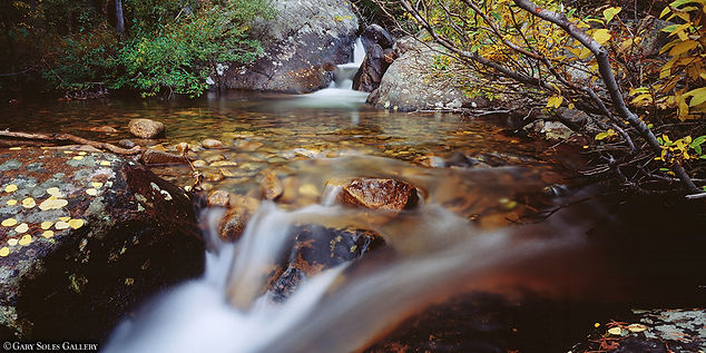 tranquility pool, fall color, stream, gary soles gallery, gary soles, breckenridge, colorado, rocky montain national park