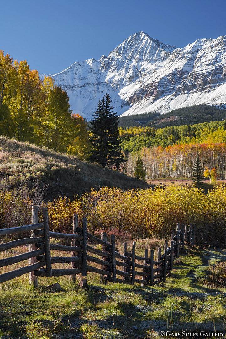 Mt Wilson Fence