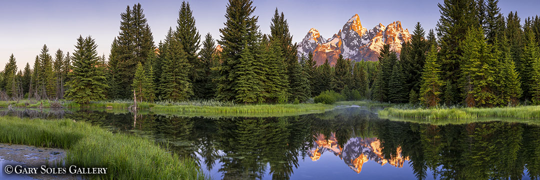 Teton Reflection 2
