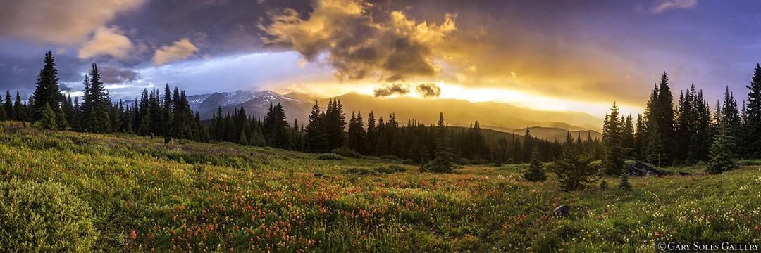Breck Summer Rain