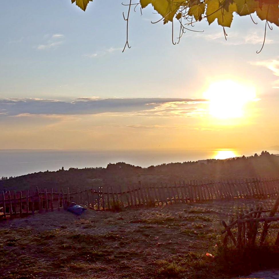 Pretty sunset - Neos Marmaras - Greece