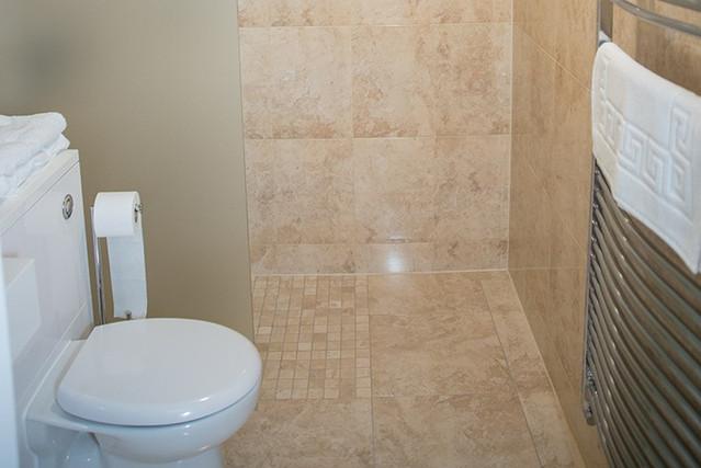 harlech-ensuite-bathroom-and-shower-imag