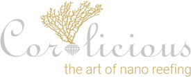 20200228_Coralicious_Logo.png