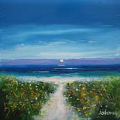 Cliadh Beach, Wild Flowers, Isle of Coll