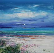 Quiet Evening - Sea Pinks, Hosta Beach, Isle of Lewis