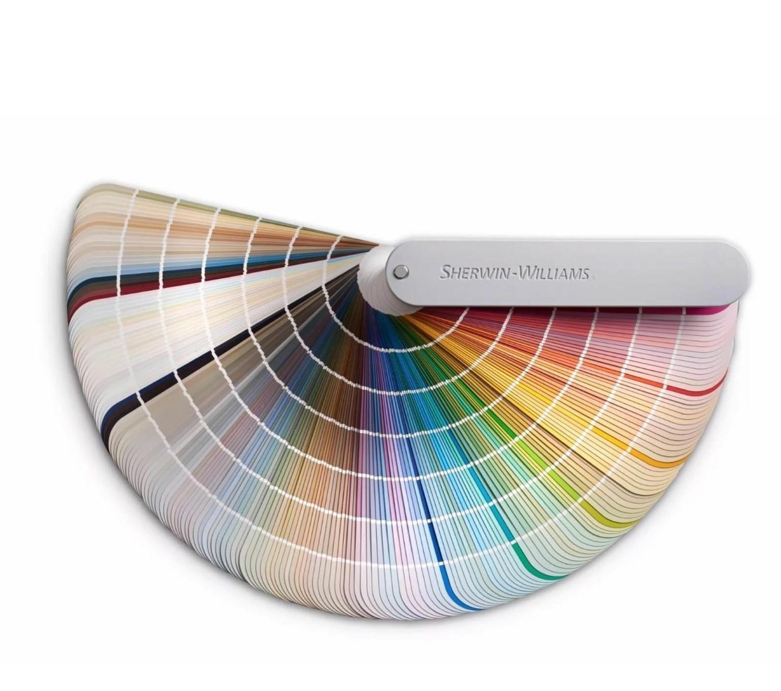 Color Consultation