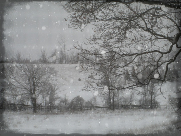 winter windows l ...