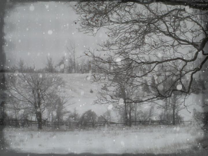 quiet fields, snow, country inspires jewelry design
