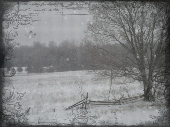 winter windows lll ...
