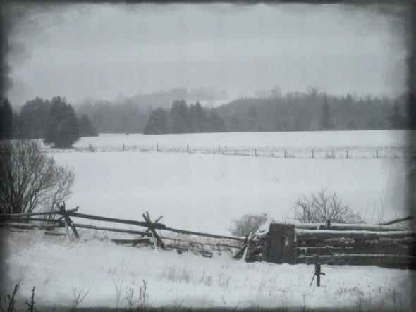 winter windows ll...