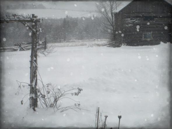 winter windows lV ...