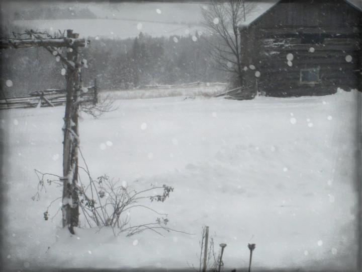 barn-boards, snow, inspire jewelry design