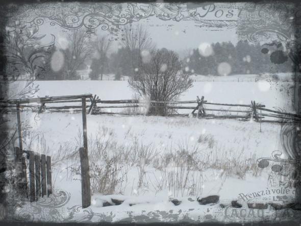 winter windows V ...