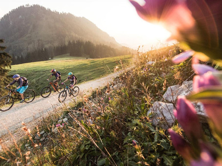 """END OF SEASON RIDE"" Rennrad & (e)Bike 19.10."