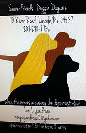 Forever Friends Doggie Daycare