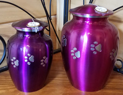 Raspberry and Purple Metal Paws