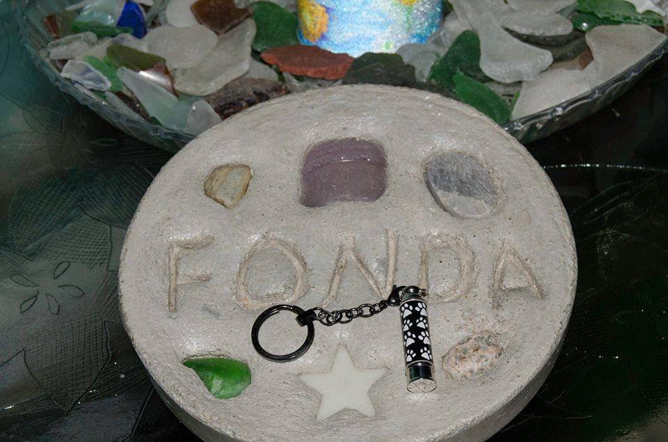 Mr Fonda