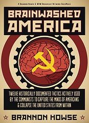 BrainwashedAmericaDVDcover.jpeg