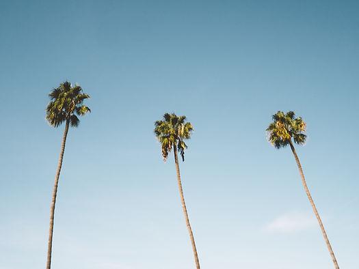 social media marketing management sunshine coast noosa