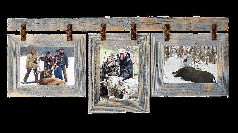frame-elk sheep hog.png