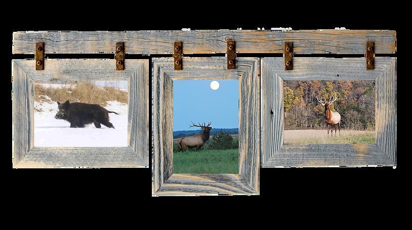 frame-hog elk deer1.png