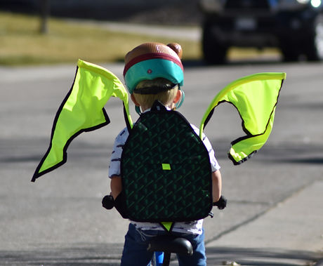 Child riding bike with safety flags