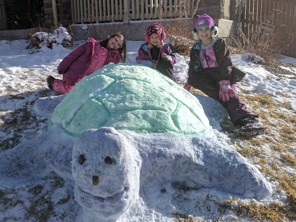 Girls playing in snow making a snow turtle with colors