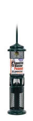 Squirrel Buster Peanut