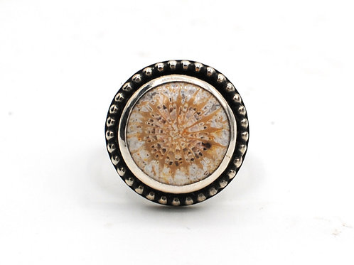Size 6¼-½ | Fossilized Coral | Sterling Silver Ring | Rough Hands Silver